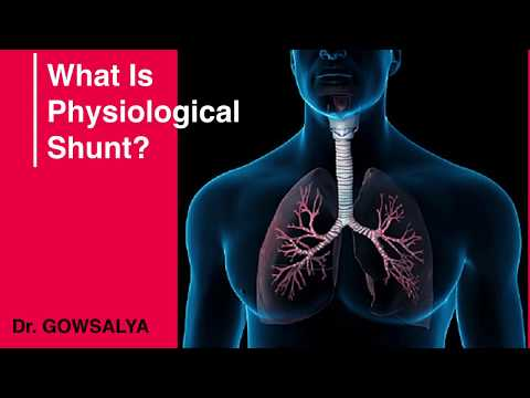 What Is Physiological Shunt? Anatomy And Physiology | General Medicine