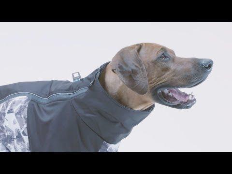 Durango Ultralight Dog Coat By Outward Hound
