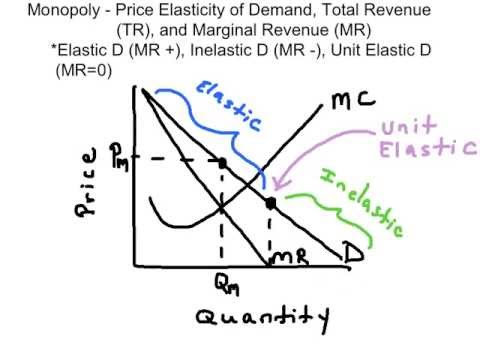 Elasticity, Total Revenue, and The Linear Demand Curve
