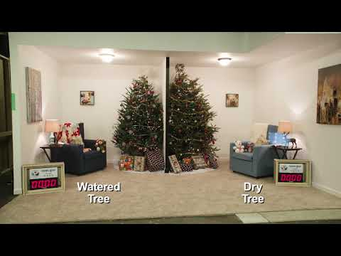 2018 CPSC Holiday Decorations Safety Press Conference