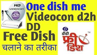 dish me Free dth Dish chalna