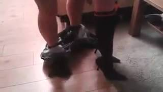 Funny video ( not sex )