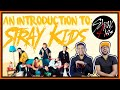 AN INTRODUCTION TO STRAY KIDS 2020 EDITION STRAY KIDS GUIDE REACTION