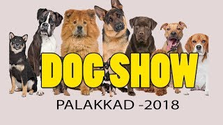DOG SHOW palakkad 2018// DOG FARMING KERALA