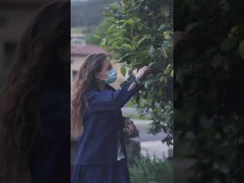 11. Nondik datorren jakin (Publikoaren saria + Musika sinkronizazio onenaren saria 2021)