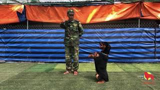 Huấn luyện chó Rottẁeiler tại Trường huấn luyện chó Thành Tài