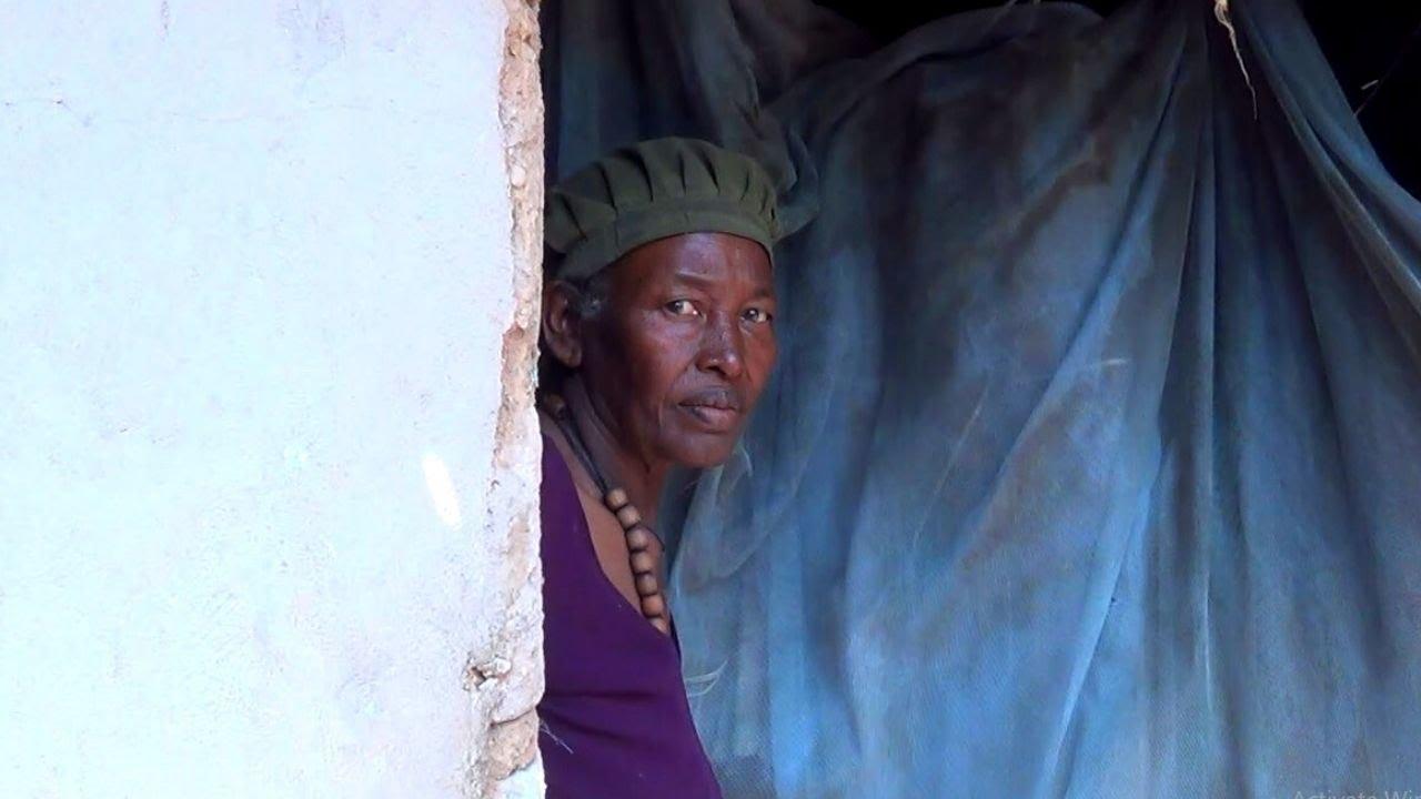 ETHIOPIA - ችግር ያላጠፉት ብቸኛ ነብስ