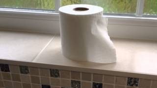Toilet Roll Changing - Teenage Instructional Video #1