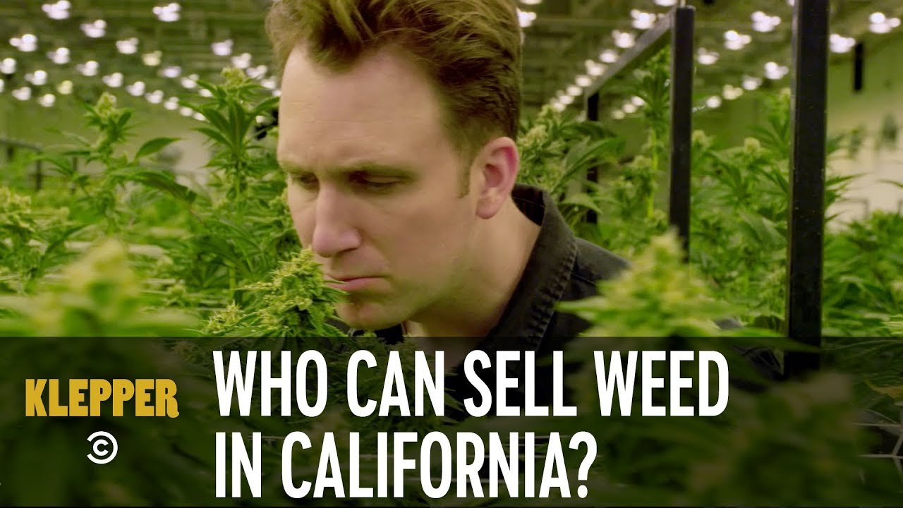 Who Gets to Sell Weed in California? - Klepper