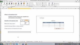 Microsoft Excel Tips and Tricks Webinar - Chicago ERP Software