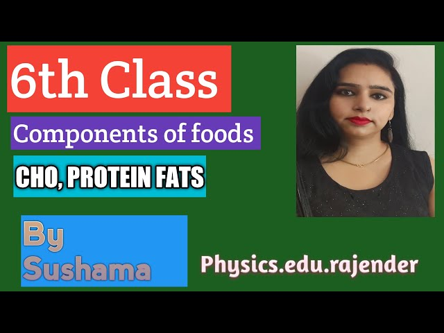 class 6 Science,  chapter 2 (components of food)