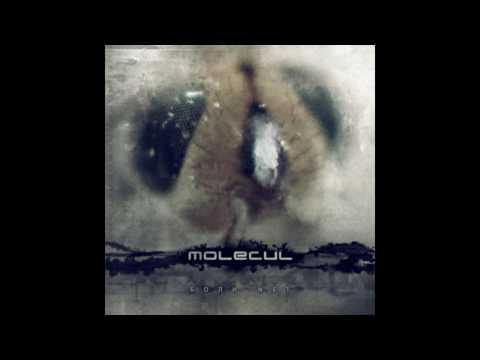 Клип MOLECUL - Небо В Меня