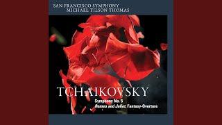 Symphony No. 5 in E Minor, Op. 64: I. Andante - Allegro con anima