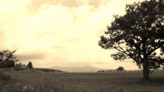 1997年:可愛和美(かあいかづみ)ライブ録音 野口久和 piano、増根哲也 ...