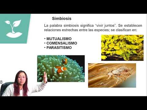 RELACIONES INTRAESPECÍFICAS E INTERESPECÍFICAS/PSU BIOLOGÍA/CLASE N°23