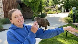 Milford Monday: National Zoo Keeper Week
