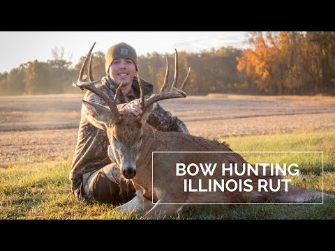 Bowhunting BIG Illinois Whitetails - November Rut