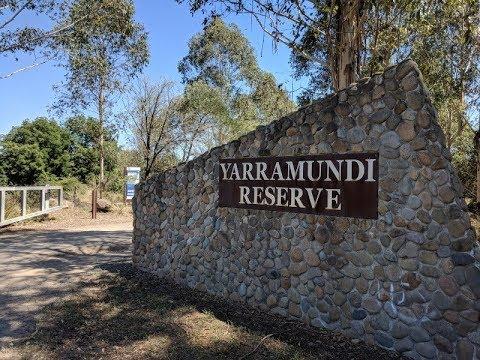 Yarramundi Bass Fishing - Nepean River NSW