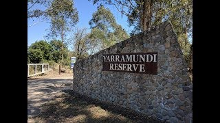Yarramundi Bass Fishing - Nepean River NSW