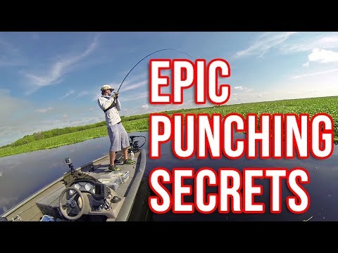 Punching For Bass EPIC Techniques And Tricks