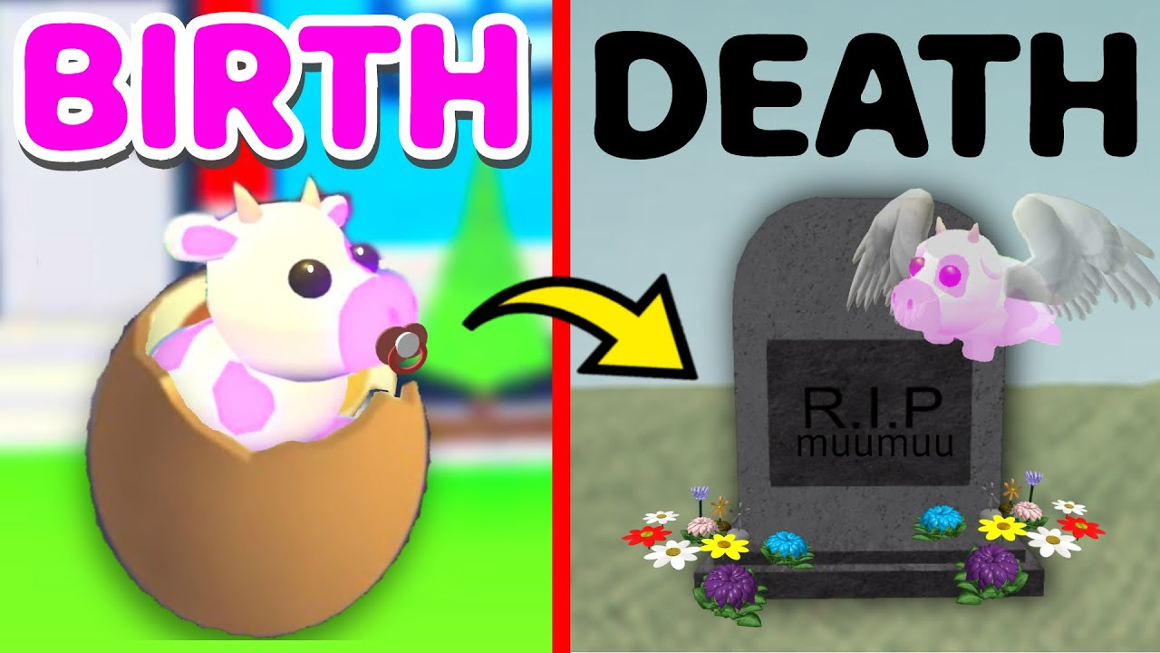 Download 🍓 BIRTH to DEATH of a STRAWBERRY COW... (Adopt Me Roblox RP)
