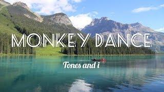 Tones and i - Dance monkey (spectrum)