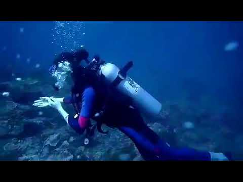 Scuba Diving Kota Kinabalu On 19 April 2018