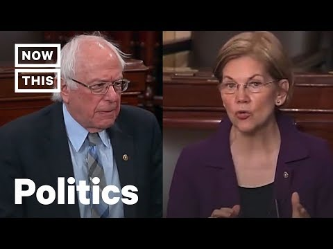 How Bernie Sanders and Elizabeth Warren Plan to Raise Trillions in Tax Revenue | NowThis