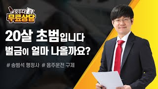 """음주운전 형사 처벌 """"20살 초범입니다 벌금이…"""