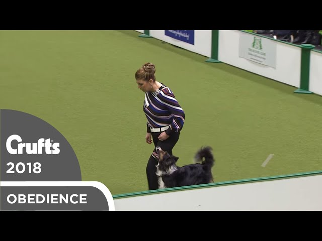 Obedience - Bitch Championship - Part 11 | Crufts 2018