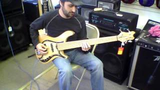 Brubaker Brute MJX 5 String Bass