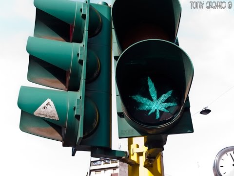 Cannabis and Driving | Y. Baruch, Cannafest 2015