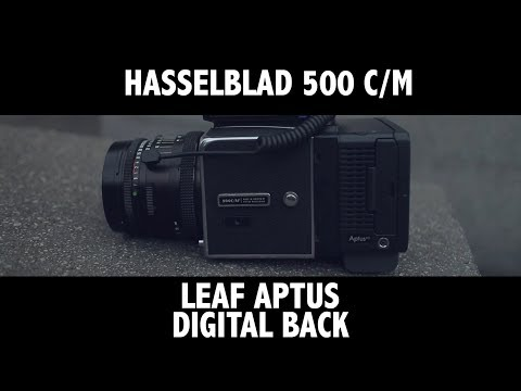 LET'S SHOOT A HASSELBLAD DIGITAL BACK!