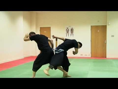 Masaaki hatsumi stick fighting