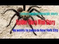 learn english - funny mini story stupid : spider story