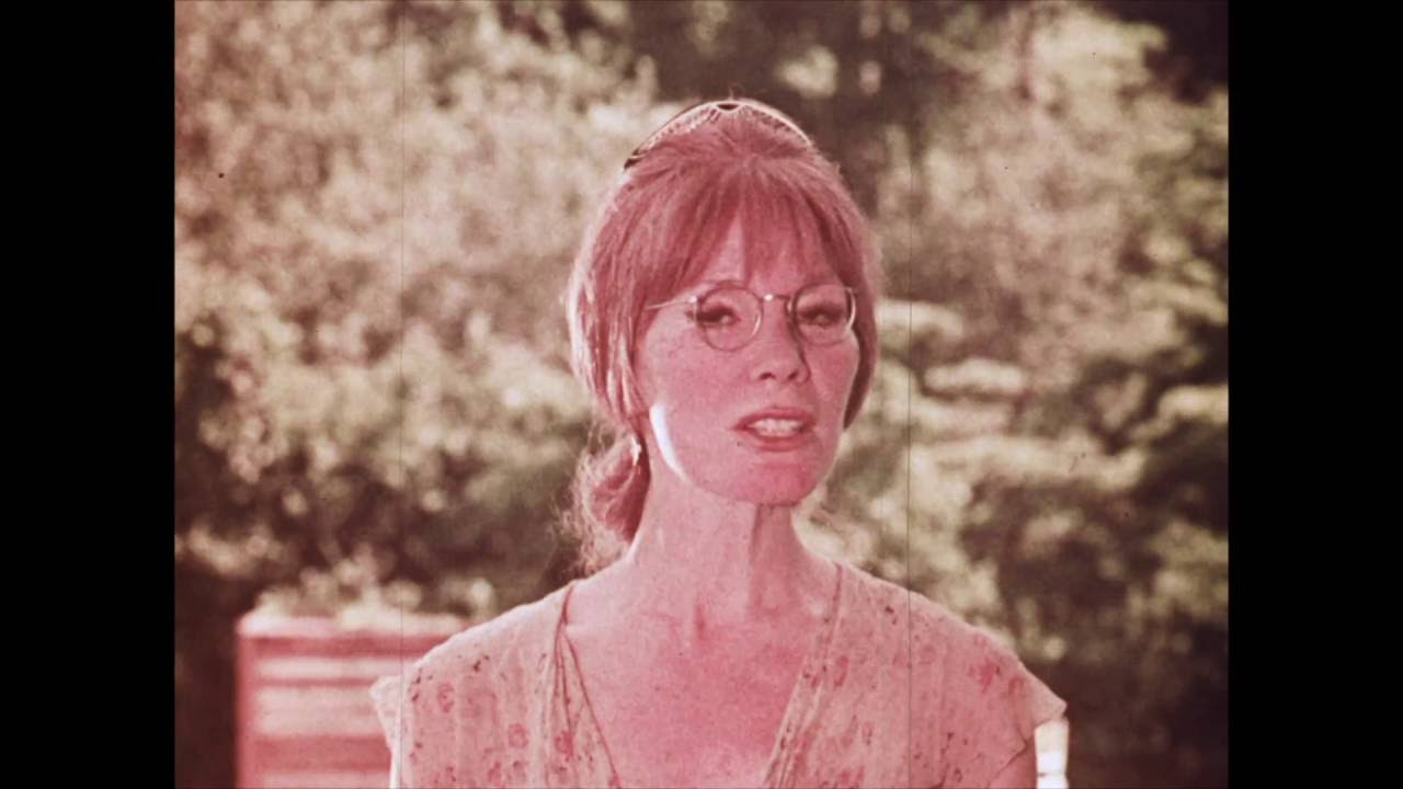 Download GUESS WHAT WE LEARNED in SCHOOL TODAY? trailer 1969