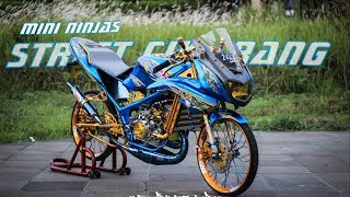 Modifikasi Ninja Biru berkelir racing| mini ninjas // _Dityaysf