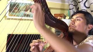 Alicia Delgado Otro fracaso en la vida(cover)Huilver Pre arpista profesional Cel:970869506/999967023 YouTube Videos