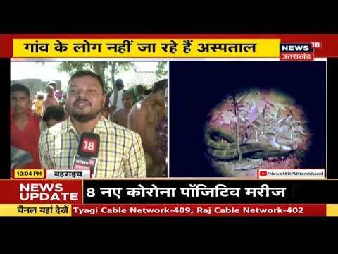 Bahraich: नाग की मौत का नागिन ने लिया इंतकाम , दो दिन में  26 को डसा, दहशत में ग्रामीण