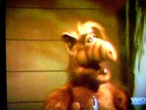 halloween alf trick or treating for cats 1987 youtube - Alf Halloween Episode
