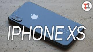 IPHONE XS dopo 9 MESI: cosa è CAMBIATO? | ITA da TuttoTech.net