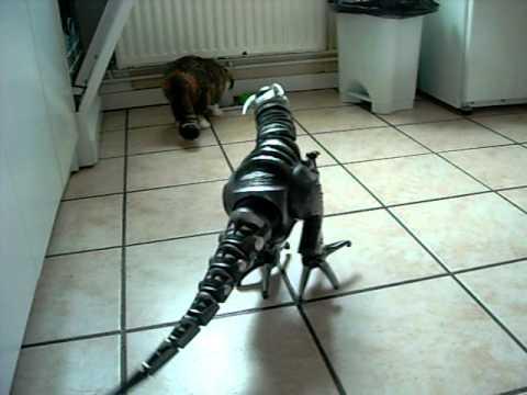 chats et roboraptor