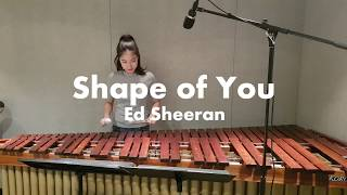 마림바로 연주하는 Shape of You - Ed sheeran / Marimba Cover