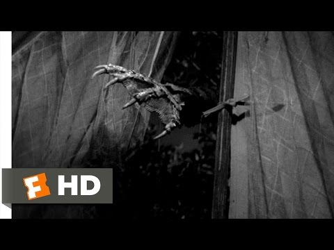 Creature from the Black Lagoon (3/10) Movie CLIP - The Creature Attacks (1954) HD