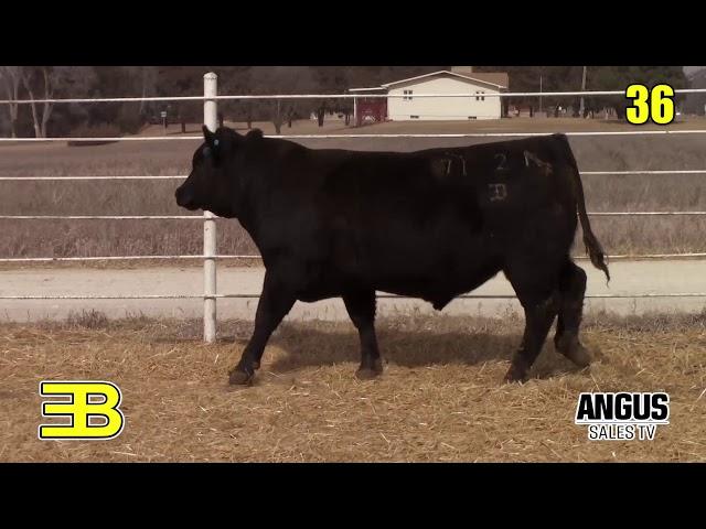 Benoit Angus Lot 36