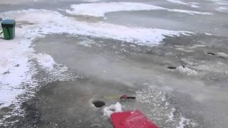 Рыбалка в Северодвинске   Белое море(Видео предоставлено сайтом http://rybolovnye.ru/, 2012-12-15T16:45:24.000Z)