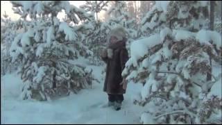«Отрывок из поэмы Мороз, Красный нос» Н. А. Некрасова