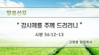 고영광담임목사 주일설교(Ko Young-kwang, t…