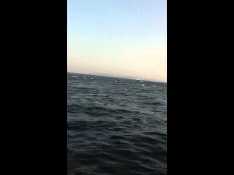 Block Island striper blitz Pt 2