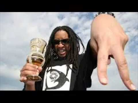 Lil Jon Feat The Eastside Boyz , Too Short  Shake That Monkey  Remix FAT B 2014